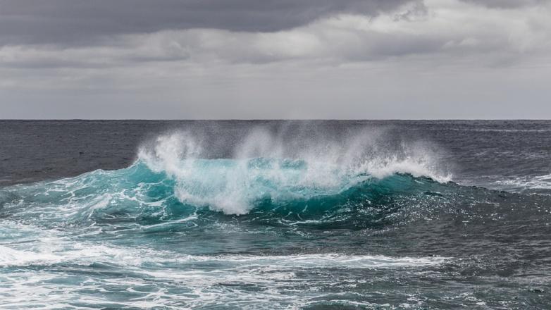 Protection des océans : des élus locaux de l'UE demandent une politique européenne