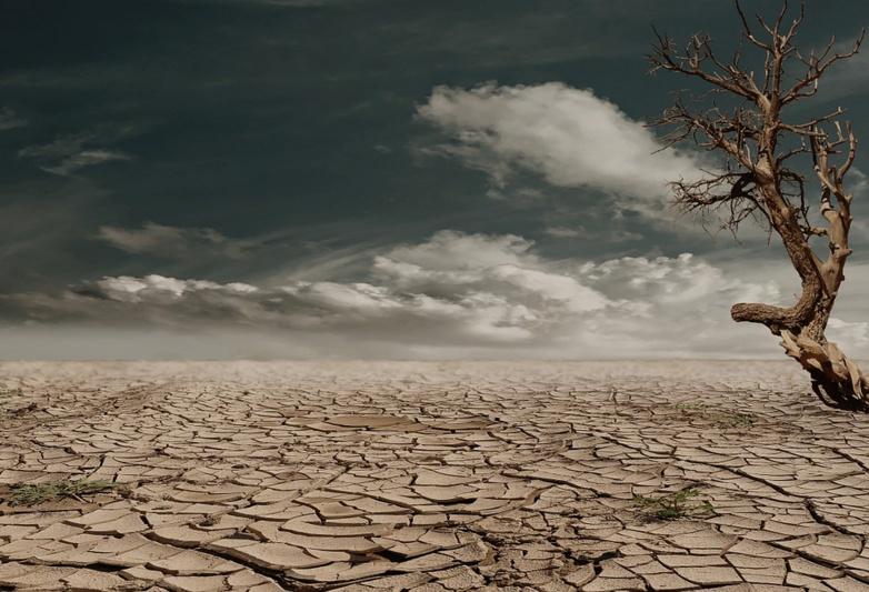 Mieux simuler l'impact d'une météo extrême sur l'agriculture