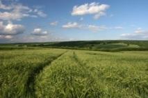 2012, année charnière pour l'agriculture biologique en France