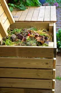 La quinzaine du compostage en entreprise : comment agir ?