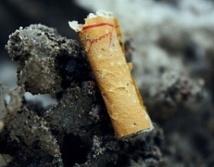 Vers une plage sans tabac
