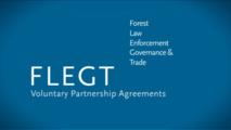 UE et Indonésie contre le trafic illégal de bois