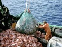 Le Parlement européen contre la surpêche