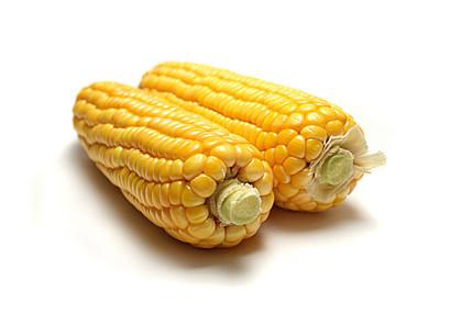OGM: le débat sera t-il relancé en 2015?