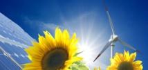 Energies renouvelables, 300 milliards de dollars d'investissements dans le monde
