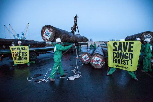 Importation illégale de bois, action choc de Greenpeace devant le ministère de l'Environnement