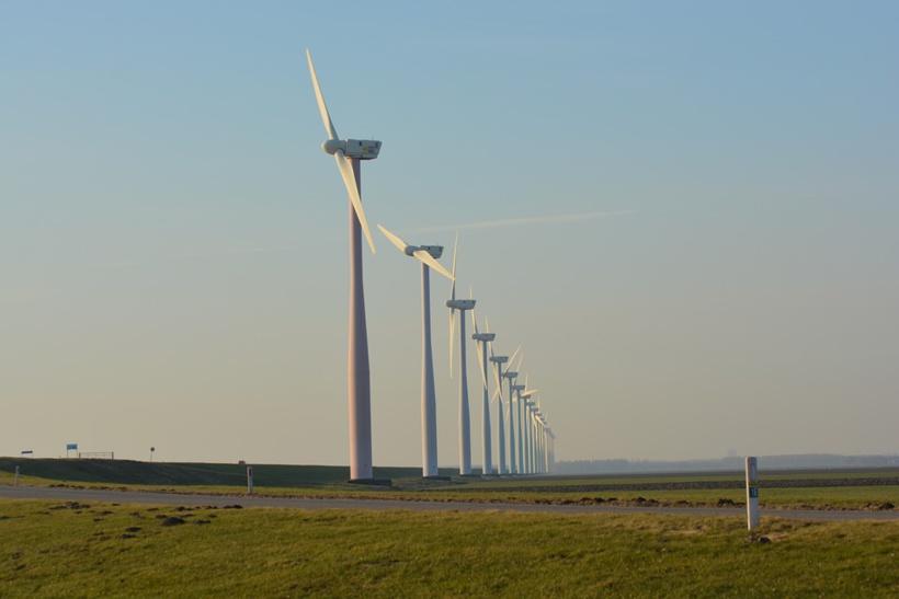 Chasseurs et pêcheurs dénoncent le « massacre » des campagnes par les éoliennes
