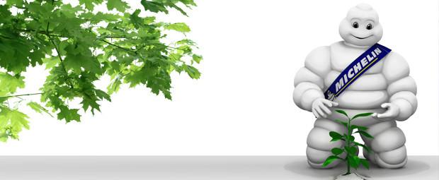 Michelin s'engage dans une politique d'approvisionnement « zéro déforestation »