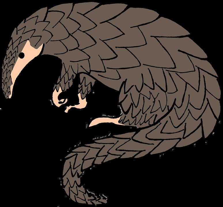 Source : Pixabay, image libre de droits