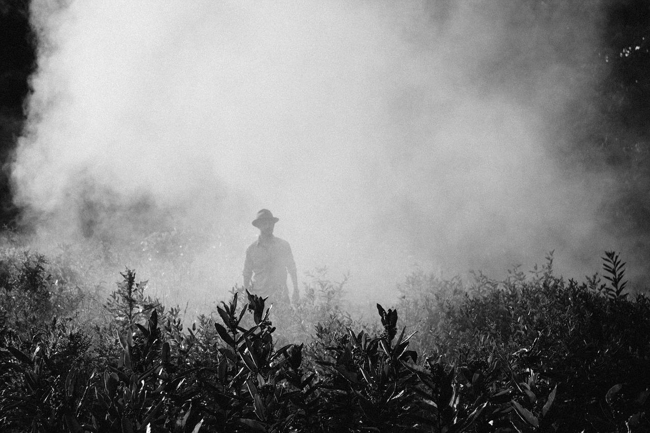 Pesticides : le projet du gouvernement n'a rien de révolutionnaire