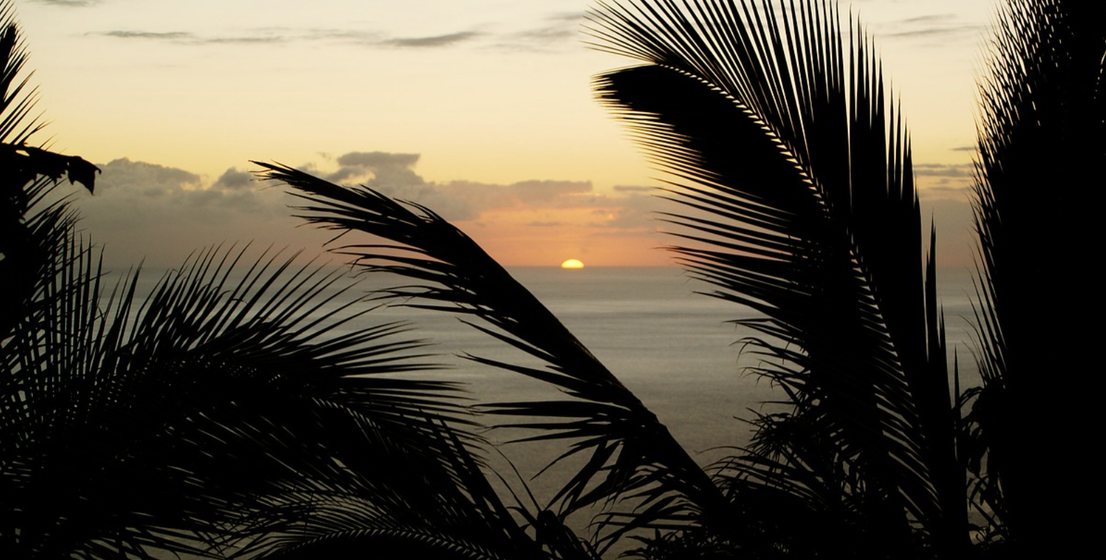 L'Ecole de management de La Réunion ouvre ses portes