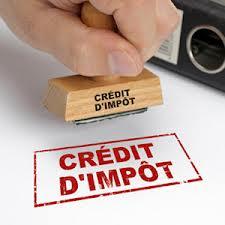 Le Sénat veut un crédit d'impôt développement durable (CIDD) plus stable