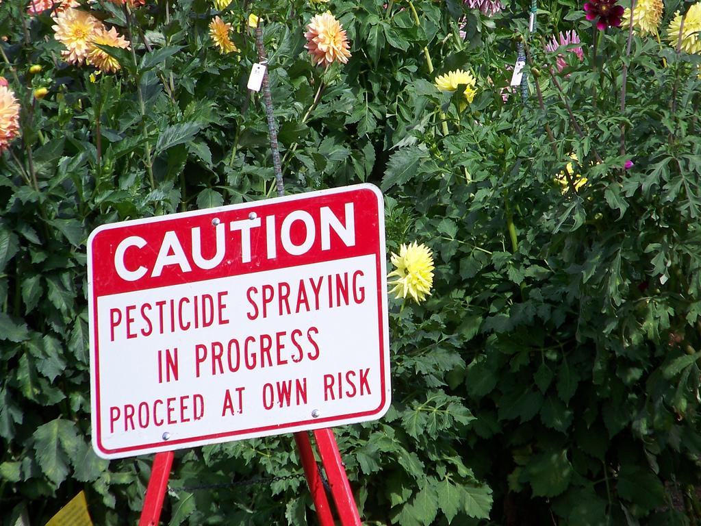 Pesticides en ville, la guerre est ouverte
