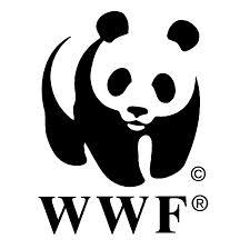 D'après le WWF la population mondiale a « consommé l'intégralité des ressources » de 2014