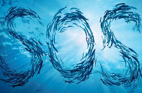 L'UE annonce une baisse des quotas de pêche