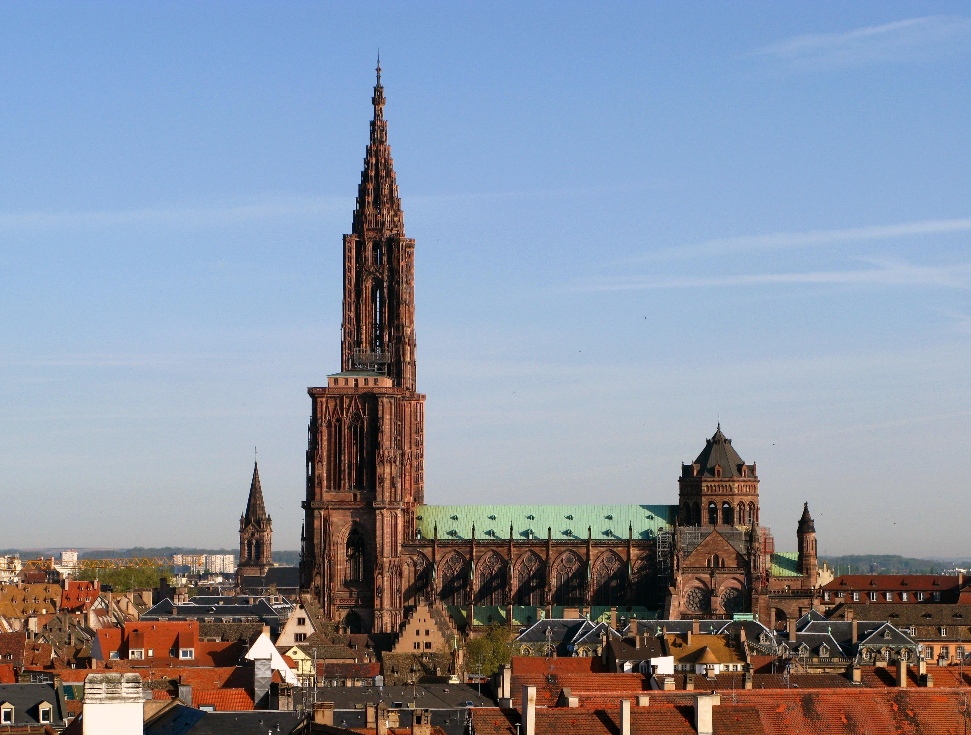 Strasbourg, « capitale française de la biodiversité » de 2014