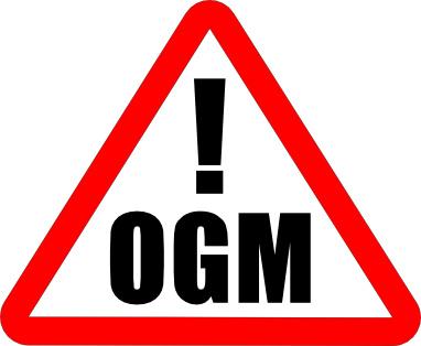 OGM, la France troisième pays pour les produits alimentaires contaminés