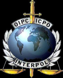 Interpol lance un appel mondial contre des criminels environnementaux