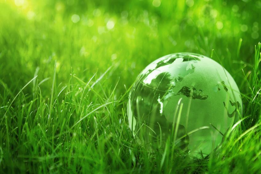 Consommation verte: du nouveau en 2015