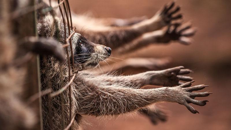 Visuel d'illustration. © Shutterstock