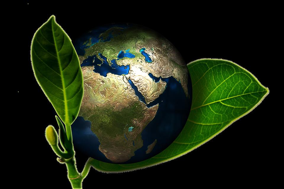 Source : Pixabay, image libre de droits.