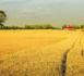 https://www.rse-magazine.com/Rechauffement-climatique-les-agriculteurs-en-premiere-ligne_a4218.html