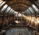 https://www.rse-magazine.com/L-Unesco-lance-un-appel-mondial-pour-soutenir-les-musees_a4300.html