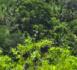 https://www.rse-magazine.com/Mayotte-une-campagne-de-prelevements-pour-modeliser-le-potentiel-geothermique_a4458.html