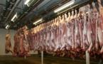 Abattoirs, des mesures ambitieuses pour lutter contre les maltraitances animales