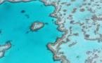 Australie : La grande barrière de corail en danger