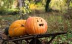 Pour Halloween, attention à ces bonbons qui contiennent des particules