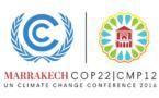 COP22, des ONG espèrent beaucoup mais s'attendent à être déçues