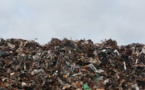 Récolter les déchets électriques est un défi de premier plan