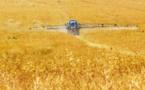 Agriculture, le ministère croit en la performance en réduisant les pesticides
