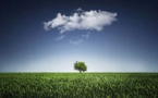 L'ADEME encourage la fiscalité environnementale