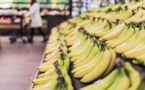 L'Ademe appelle les industriels agroalimentaires à réduire leurs pertes alimentaires
