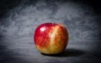 Apple se lance dans les iPhones recyclés et recyclables