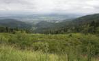 Des ONG demandent un « grand ministère de l'Environnement »