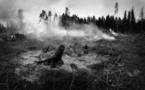 Incendies dans les Bouches-du-Rhône : les 24 massifs fermés au grand public