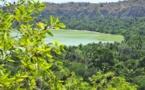 Une nouvelle réserve naturelle des forêts publiques de Mayotte