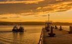 Autorisation de la pêche électrique, mais quelle mouche a piqué l'UE ?