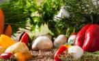 Alimentation, lever le voile sur l'opacité du terme « bio »