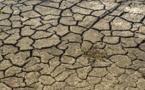 Selon la FAO, l'insécurité alimentaire pourrait augmenter de nouveau