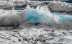 Environnement : l'Anses et l'Ifremer renforcent leur collaboration