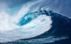 Réchauffement climatique : les effets de l'acidification observés par l'Ifremer