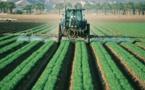 Le plan du gouvernement pour une agriculture avec moins de pesticides