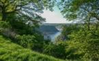 Changement climatique, quelles conséquences sur les bassins du Rhin français ?