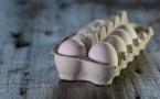 Poules en batterie : 2,5kg de CO2 par douzaine d'œufs