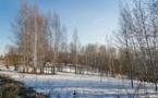 Greenpeace et WWF obtiennent la création d'une réserve naturelle en Russie
