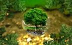 L'environnement trouve sa place dans l'article 1er de la Constitution